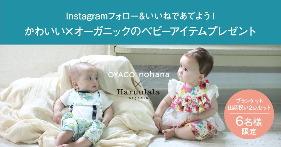 『OYACO nohana(オヤコノハナ)』×『Haruulala』コラボキャンペーン