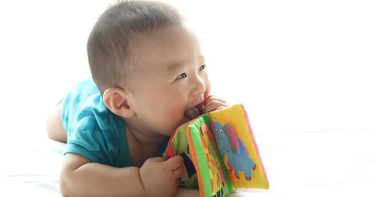 布絵本を持つ赤ちゃん